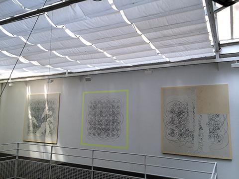 DG-hostinato mur-03